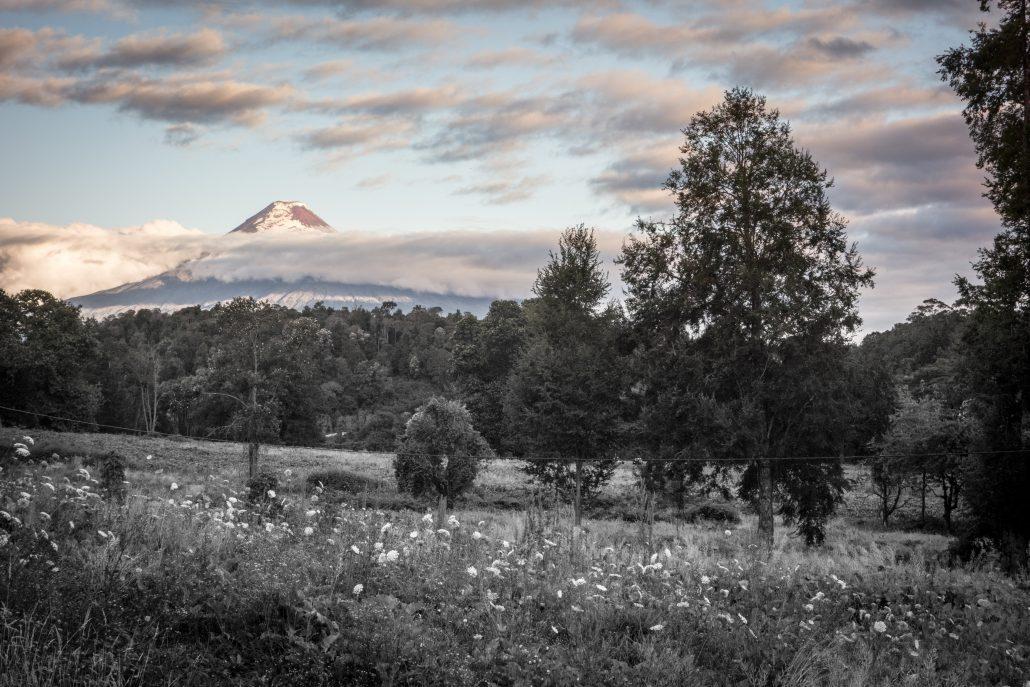 Vue sur le volcan Osorno depuis la ferme