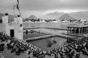 Lac sacré de Pushkar