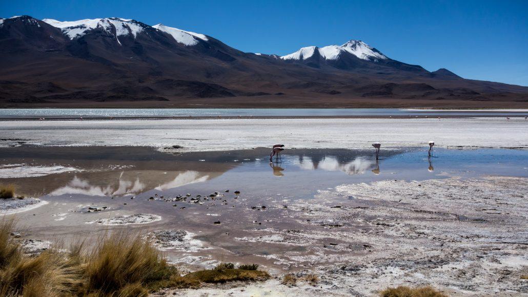 Bolivie : Le bilan