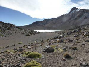 Laguna de Altura, arrivés à quasi 5000m