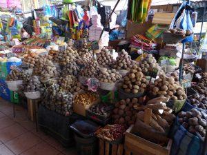 Le million de variétés de patates péruviennes