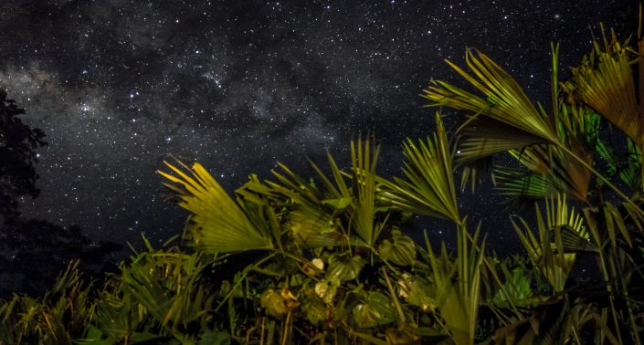 Gaia by night