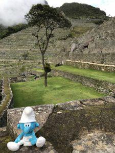 Et notre Brubru au Machu Picchu !